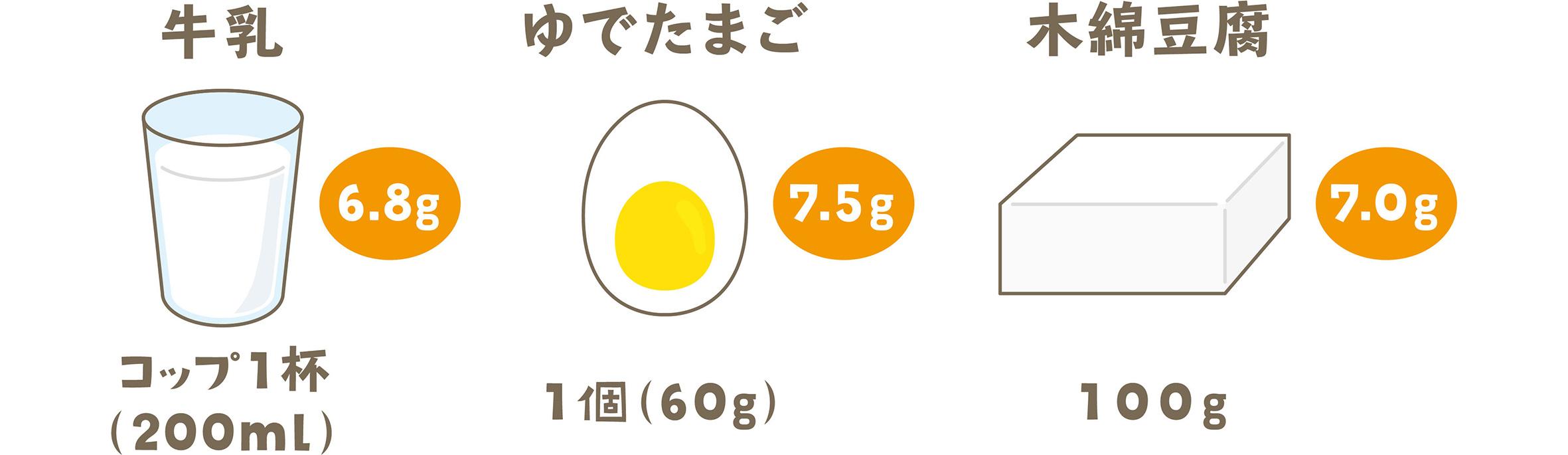 たんぱく質を含む食品例